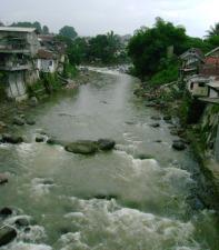 Bogor River