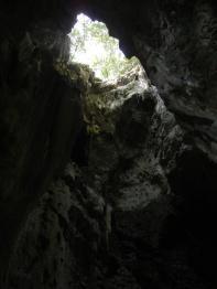 Killing Caves