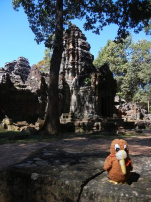 Traveling Kiwi at Angkor Wat2