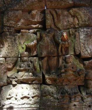 Traveling Kiwi at Angkor Wat
