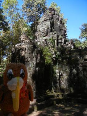 Traveling Kiwi at Temple