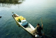 Flower Vendor on Lake Dahl