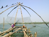 Kochi Fishermen