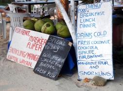 Fress Coconut