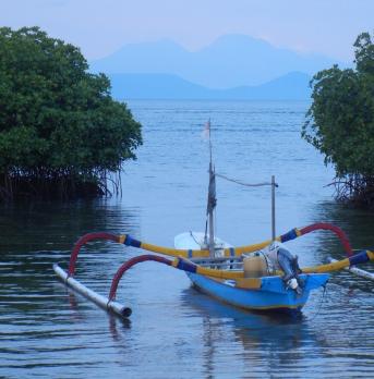 View to Bali