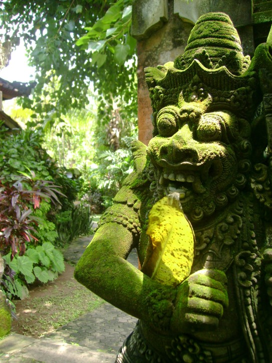 Moss Covered Bali Icon