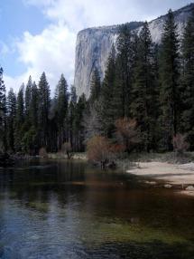 Merced River, Redwoods, and El Capitan