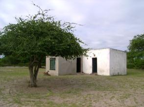 Manguzi