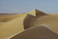Sinai Sands