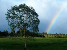 Te Anau Rainbow