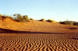 Kalahari Red Dirt