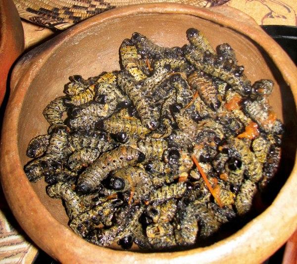 Mopane Dinner